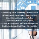 Ambulatory EHR Market by Delivery Mode (Cloud-based, On-premise), Practice Size (Small-to-medium, Large, Solo), Application (Patient Management, Practice Management, Referral Management, Health Analytics), End User - 2019 to 2024
