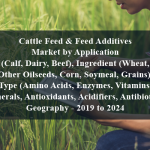 Cattle Feed & Feed Additives Market by Application (Calf, Dairy, Beef), Ingredient (Wheat, Other Oilseeds, Corn, Soymeal, Grains), Type (Amino Acids, Enzymes, Vitamins, Minerals, Antioxidants, Acidifiers, Antibiotics), Geography - 2019 to 2024