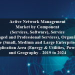 Active Network Management Market by Component (Services, Software), Service (Managed and Professional Services), Organization Size (Small, Medium and Large Enterprises), Application Area (Energy & Utilities, Power), and Geography - 2019 to 2024