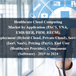 Healthcare Cloud Computing Market by Application (PACS, VNA, EMR/HER, PHM, RECM), Deployment (Hybrid Cloud, Private Cloud), Service (IaaS, SaaS), Pricing (PayG), End User (Healthcare Provider), Component (Software) - 2019 to 2024