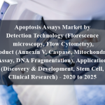 Apoptosis Assays Market by Detection Technology (Florescence microscopy, Flow Cytometry), Product (Annexin V, Caspase, Mitochondrial Assay, DNA Fragmentation), Application (Discovery & Development, Stem Cell, Clinical Research) - 2020 to 2025